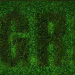 green-sbf